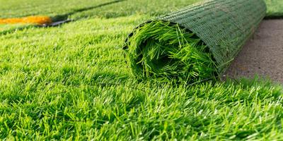 Искусственный газон, информация к размышлению