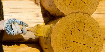 Как защитить постройки из дерева: выбираем лучший антисептик
