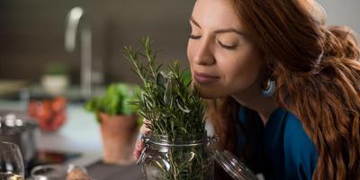 Запахи: средство борьбы с болезнями или рычаг для манипуляции?