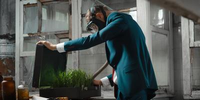 Теория заговора: растения-шпионы