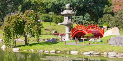 7 знаковых атрибутов сада в японском стиле