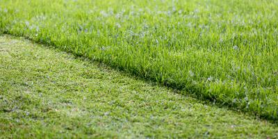 7 полезных функций газонокосилки, которые значительно облегчат вам жизнь