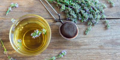 Народные средства от аллергии: миф или панацея?