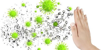 Иммунитет, как он работает? Друзья и враги нашего иммунитета