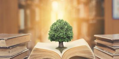 План правительства по изменению Земельного Кодекса