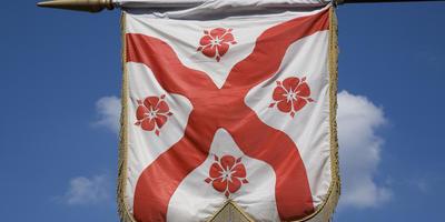 Что значат лилии, розы и чертополох на флагах: постигаем геральдическую ботанику