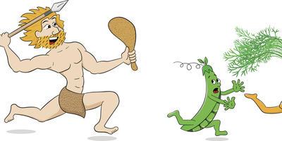 Инвентаризация: от палки-копалки до культиватора. Мотыга - самый древний инструмент