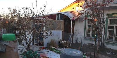 Какие культуры и сорта планирую для своего огорода в будущем сезоне