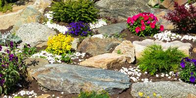 Подбираем растения для рокария, чтобы он был в цвету все лето