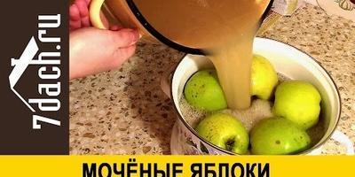 Моченые яблоки (видео)