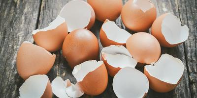Удобрение из яичной скорлупы (видео)