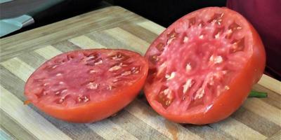 Проверенные сорта томатов: практичные крупноплодные