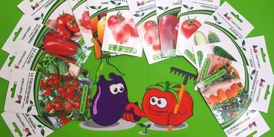 Как добиться успеха в выращивании томатов