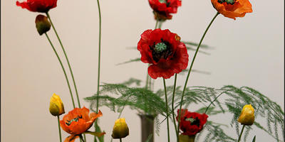 Крупнейшая международная выставка «International Planzenmesse-Essen - IPM-2014»