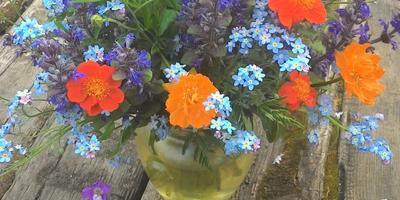 С весны до лета с дачи с букетом. :)