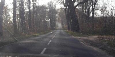 Осенняя прогулка. Часть первая