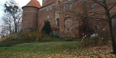 Осенняя прогулка. Часть вторая