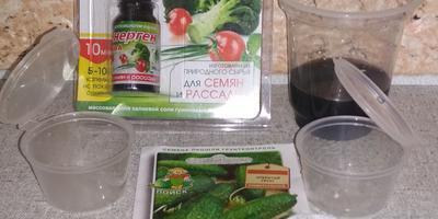 Энерген АКВА. Замачивание семян перед высадкой на рассаду