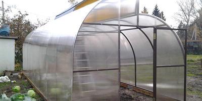 Выращивание овощей в теплице по Митлайдеру. Поделитесь опытом