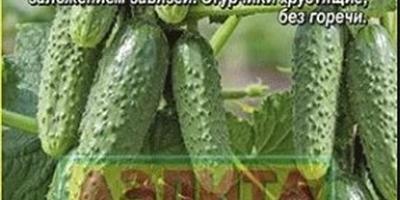 Народное тестирование семян от ООО «Агрофирма АЭЛИТА». Послесловие