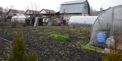 Домашнее задание №2: наш огород