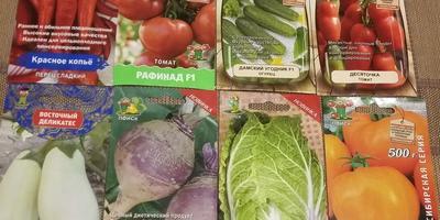Подарок от Агрохолдинга Поиск