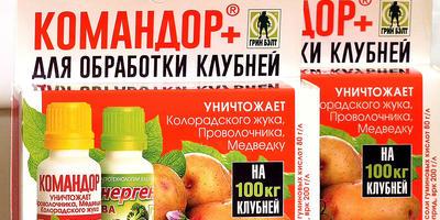 """Тестирование препарата """"Командор+ для обработки клубней картофеля"""". Всходы картофеля"""