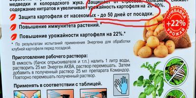 """Чудес не бывает... Тестирование препарата """"Командор+ для обработки клубней картофеля"""""""