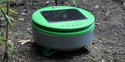 Электронная Тортилла избавит сад от сорняков