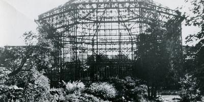 Ботанический сад в блокадном Ленинграде