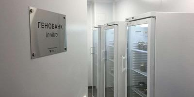 In vitro vero: уникальный российский безвирусный питомник растений в Крыму