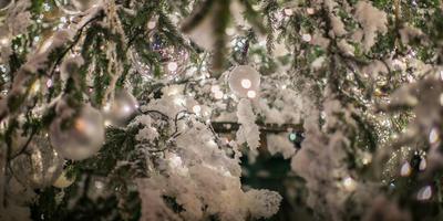 Волшебное «Путешествие в Рождество»
