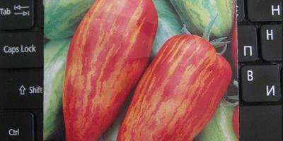 Завязываются бутоны на рассаде томатов. Что делать?