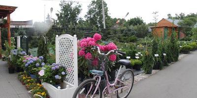 """Суперпредложение от Садового Центра «Gardens» для подписчиков """"7 дач""""!"""