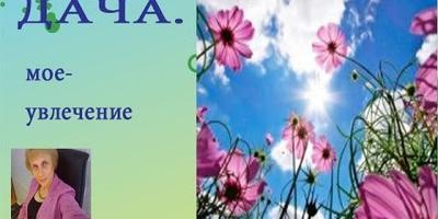 Про астильбу: деление куста, пересадка, уход