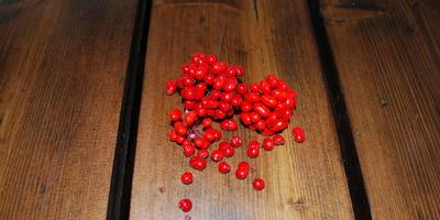 Домашняя работа №6: семена покупай и про свои не забывай!