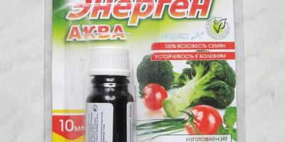 Энерген АКВА. Обработка семян свеклы перед посевом в открытый грунт