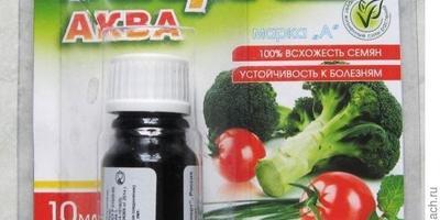 Энерген АКВА показал себя отлично - обработанные семена тыквы явно лучше растут и развиваются!