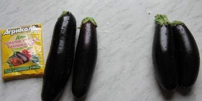 Агрикола увеличила урожай баклажанов на 37,17%! Это круто!