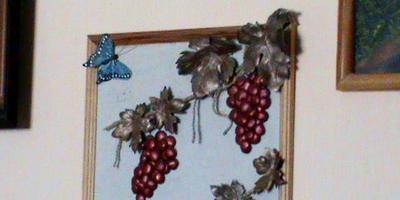 Когда на участке не растёт виноград