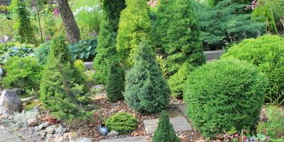 Вам нужен помощник в саду? Купите садовый измельчитель!