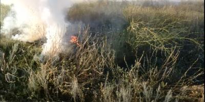 Пожары: как тушить возгорание около участка
