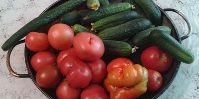 Простая деревенская еда в картинках