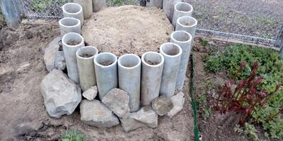 Можно ли в эти трубы посадить петунию?