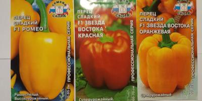 """Перцы сладкие F1 от """"Седек"""" - какой выбрать?"""