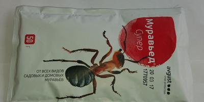 Муравьед идет из ОБИ - разбегайтесь, муравьи, пока не поздно!