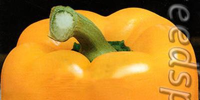 Сладкие перцы серии Звезда Востока F1 - необыкновенная сочность и аромат