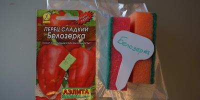 """Сажаю сладкий перец в """"улитки"""" (запись №1, 16 февраля 2018 года)"""