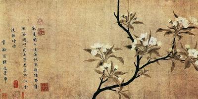 Груша в китайской поэзии и медицине
