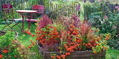 Бордюры — стильная оправа для садовых «самоцветов»